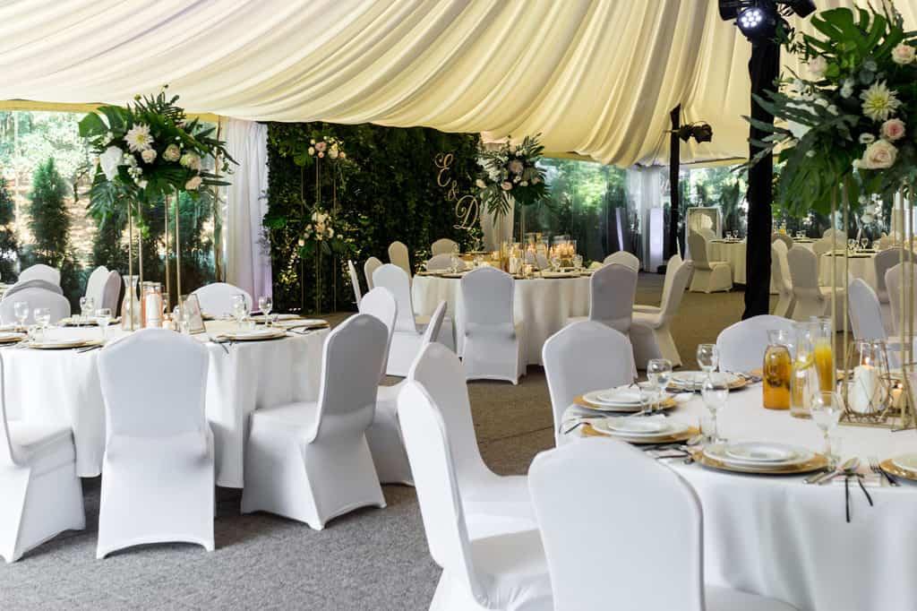 Monstera króluje na weselu w Pałacu w Myślęcinku 013 hotelpa  ac 1 13