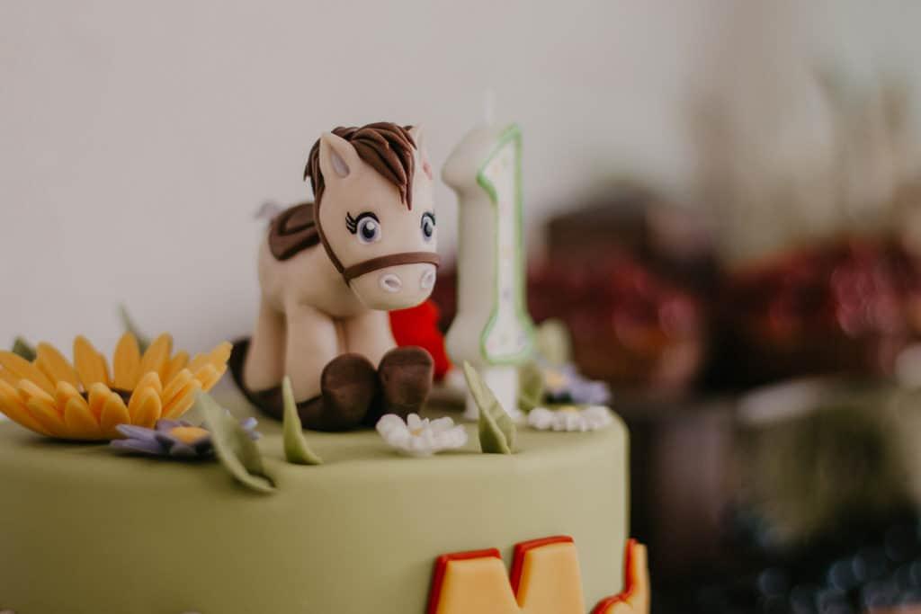 Organizacja urodzin dla małej Mai w ogrodzie 063 maja 23
